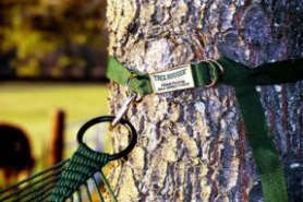 lawson hammock blue ridge camping review lawson hammock buying guide   full review tips and advice  rh   whathammock