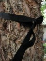 TreeHugger hammock straps review